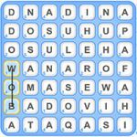 Word Finder Board Game